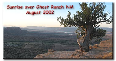 Tree overlooking Ghost Ranch, you can see terrell in the lake.